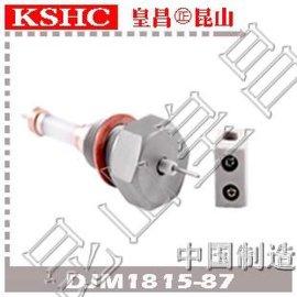 锅炉水位计电接点氧化铝水位电极DJM1815-97锅炉外螺纹水位电极棒