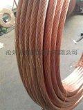 2014沧州恒泰  优质铅包铜绞线/铜包钢绞线