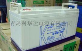青岛科士达蓄电池12v系列报价