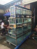 广州哪里定做海鲜池便宜/订做不锈钢框架海鲜池/不锈钢海鲜玻璃鱼缸哪里安装/不锈钢包边海鲜池