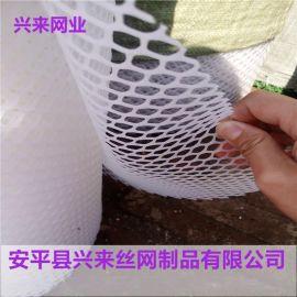 雏鸡脚踏网,小孔塑料网厂家,漏粪小孔塑料网