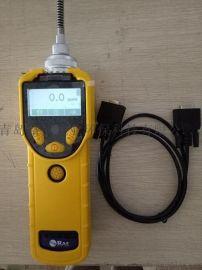VOC气体测量仪 PGM-7320光离子化检测器