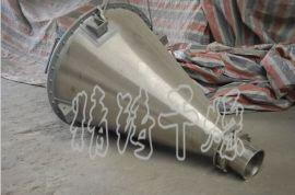 常州精铸干燥专业生产DSH系列双螺旋锥形混合机 可加工定制