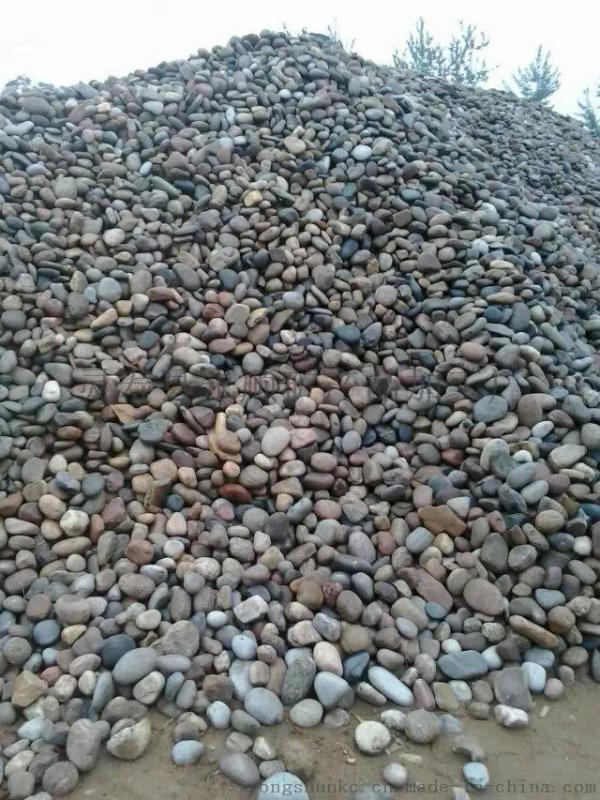 河北保定5-8cm天然变压器鹅卵石新行情