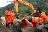 水利工程铅丝笼 堤坡护岸铅丝石笼网 防汛铅丝笼