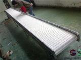 礦泉水鏈板輸送線,飲料食品鏈板輸送線,鏈板輸送線