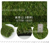 临沂卓远人造草坪厂家,足球场免填充,幼儿园休闲草