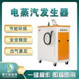 24KW全自動電蒸汽鍋爐移動式食具消毒電蒸汽機