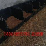 塑料鴨產蛋窩 鴨產蛋窩廠家 黑色鴨產蛋窩報價