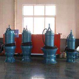 800QZB-8  口径潜水轴流泵卧式安装