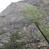 山体防护网.山体柔性防护网.山体柔性边坡防护网