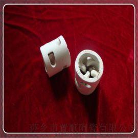 陶瓷鲍尔环填料 传质设备17-23氧化铝陶瓷填料