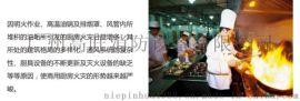 广西南宁专业厨房设备自动灭火装置厂