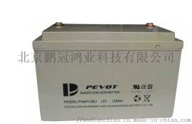 PEVOT蓄电池12V120AHups/eps专用