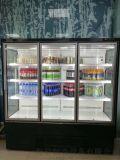 新乡洛阳饮料冷藏柜多少钱一台