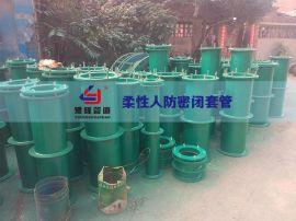 武汉加长型柔性密闭防水套管
