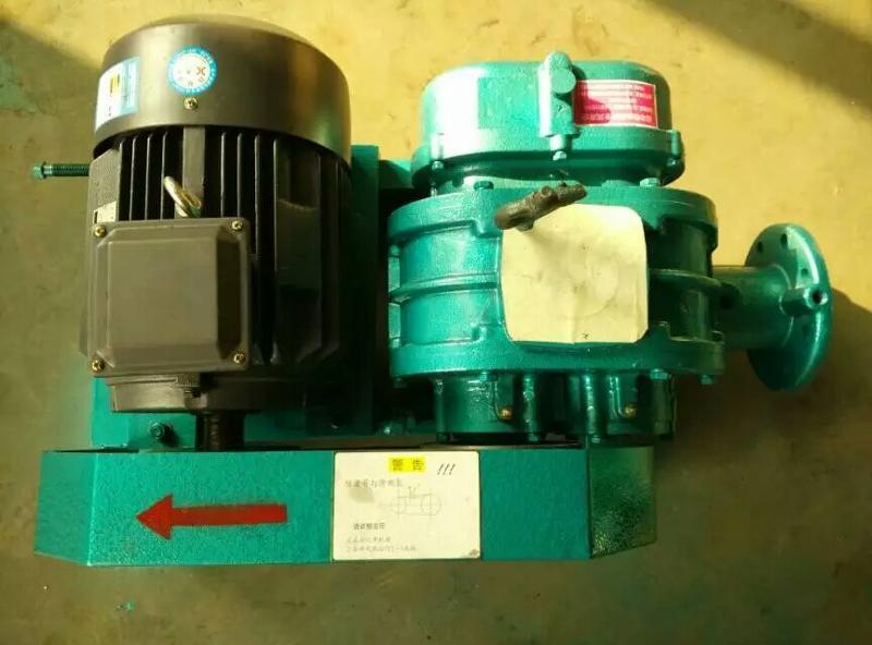 厂家直销滑片式回转式鼓风机污水处理体积小风量大耗能省