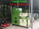 生物質蒸汽發生器  節能環保 五分鐘產氣 代替燃煤鍋爐 節能環保