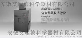 赛智凝胶成像系统 ChampGel 5000