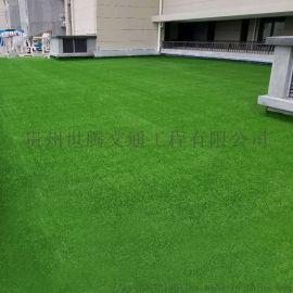 人造仿真草皮塑料假草皮学校地毯草坪