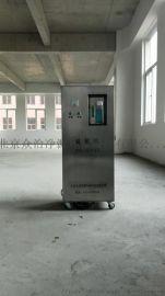工厂车间级洁净空间使用臭氧发生器