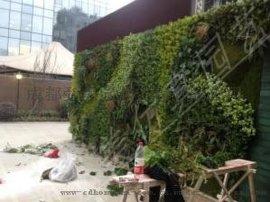 涪陵长寿仿真植物墙 丰都假植物墙生产 武隆綦江南川假植物生产批发