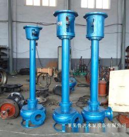 PSL防爆型液下耐磨渣浆泵