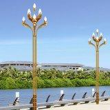 四川景觀燈,中晨景觀燈,景觀燈,道路景觀燈
