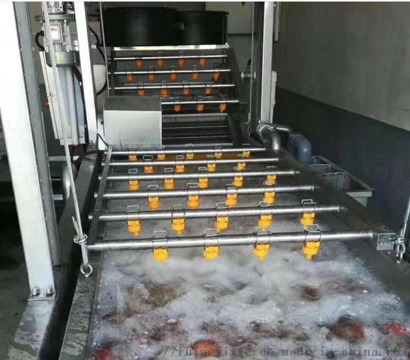 蔬菜水果清洗機 蘋果橘子深加工清洗設備