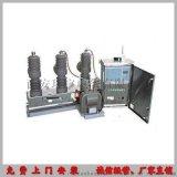 全自動10KV雙電源高壓真空斷路器生產廠家