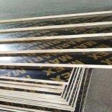 鑫虹泰建筑镜面板厂 松桉木建筑模板覆膜板