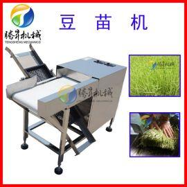 豆苗切割机 全自动豆苗收割机 黄豆苗绿豆苗切割设备