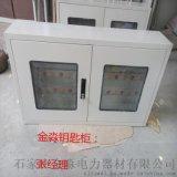 石家莊金淼電力生產銷售  各種規格 型號  冷軋材質 鑰匙箱