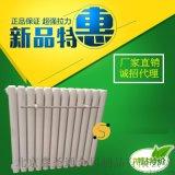 暖氣片鋼製散熱器家用 50*25雙水道鋼二柱 廠家直銷抗高壓