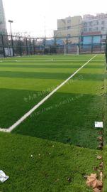 笼式足球场-青岛小型足球场人造草坪