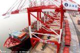 广州到上海集装箱海运公司电话  集装箱物流专线