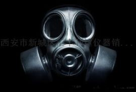 供應西安3m6200防毒面具18992812558