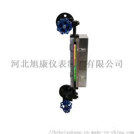 B49H带灯式石英管双色液位计 石英管液位计