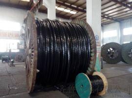 供應WDZ-VV 3*120+1*70齊魯電纜