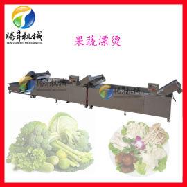 食品机械厂家,定制全不锈钢桑芽菜漂烫流水线