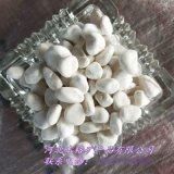 德州供应本格3-5 5-8厘米天然白色鹅卵石雨花石