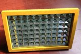 【隆业专供】厂家直销专业制造防爆免维护节能照明灯