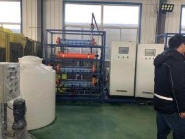 电解盐次氯酸钠发生器/50克水厂消毒设备