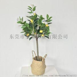 仿真带花柠檬树带花柠檬树 绿植盆栽 家居摆设假树