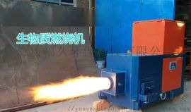 河北黄骅生物质燃烧炉燃烧机厂家