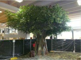 廠家直銷定制仿真植物假樹室內外裝飾大型榕樹