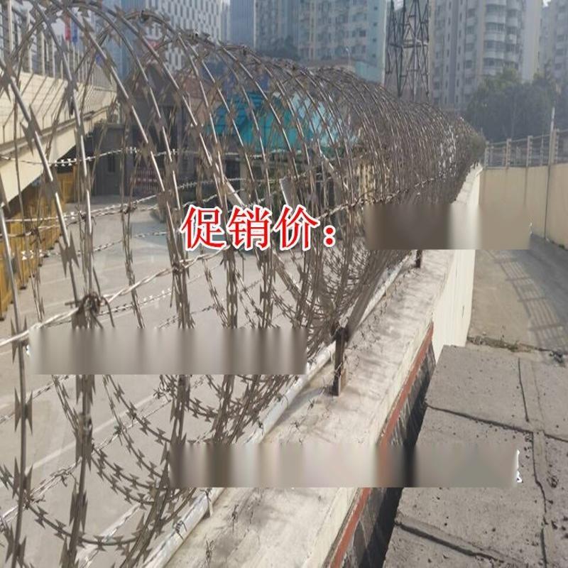 2020防盗较强的热镀锌刀片刺绳 围墙防攀爬刺  螺旋式刺笼铁丝网
