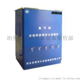 电子两相即热式电热水器型号定制
