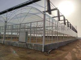 薄膜连栋温室大棚 花卉蔬菜种植大棚