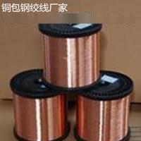 镀铜钢绞线与铜包钢绞线用于防雷接地哪种更实惠